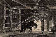 A horse-whim of horse-gin.  Such a device was used to raise coal from the bottom of a mine.   From  'Underground Life; or, Mines and Miners' by Louis Simonin (London, 1869). Wood engraving.