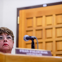 041415       Cable Hoover<br /> <br /> New District 4 city councilor Fran Palochak listens to presentations during the City Council meeting Tuesday at City Hall in Gallup.