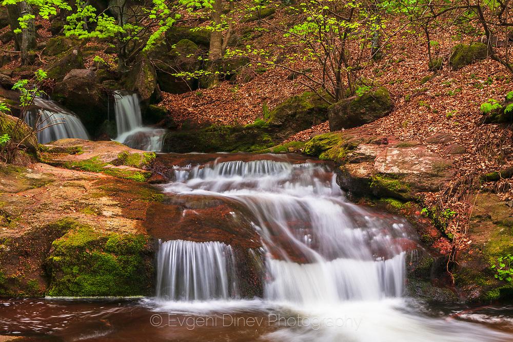 Kopren eco trail