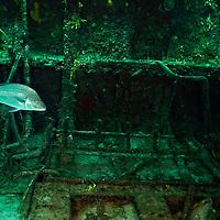 Below Deck, Doc Paulson, Grand Cayman
