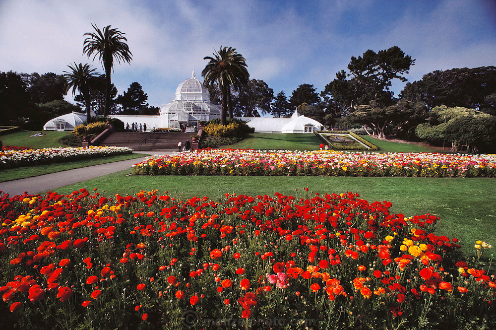 Golden Gate Park, Conservatory. San Francisco, California. USA