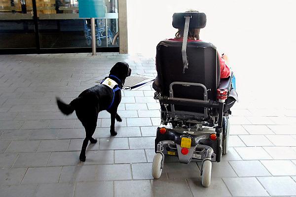 Nederland, Nijmegen, 12-5-2011Een vrouw met een lichamelijke beperking rijdt in haar rolstoel onder begeleiding van haar hond.Foto: Flip Franssen