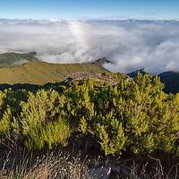 Trek to Pico Ruivo.