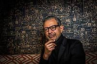 Washington, DC -- Jeff Goldblum, star of the first Independence Day movie who returns for the sequel 20 years later, at the Ritz Carlton Georgetown, Washington DC.  Photo by Jack Gruber, USA TODAY
