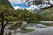 The Milford Track in Fiordland National Park, Southland region, South Island of New Zealand. In 1990, UNESCO honored Te Wahipounamu - South West New Zealand as a World Heritage Area.