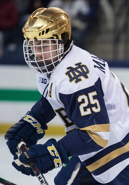 January 25, 2019:  Notre Dame forward Dylan Malmquist (25) during NCAA Hockey game action between the Michigan State Spartans and the Notre Dame Fighting Irish at Compton Family Ice Arena in South Bend, Indiana.  Notre Dame defeated Michigan State 6-3.  John Mersits/CSM