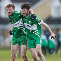 Wolfe Tones celebrate at the final whistle