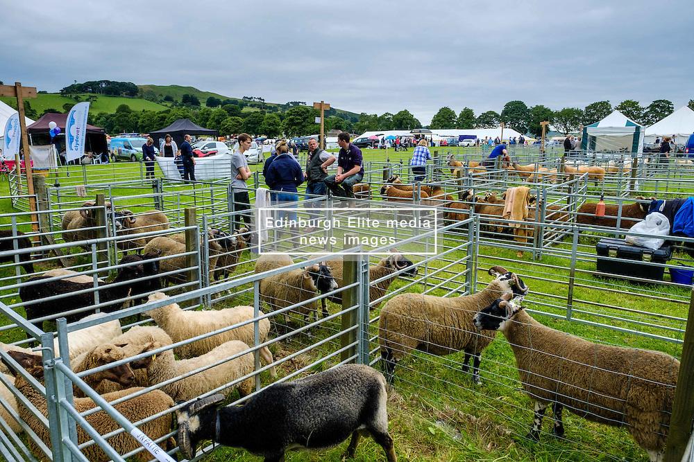 Biggar, South Lanarkshire, Scotland 23 July 2016<br /> <br /> <br /> (c) Andrew Wilson   Edinburgh Elite media