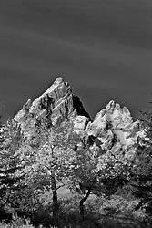 Grand Tetons, Fall