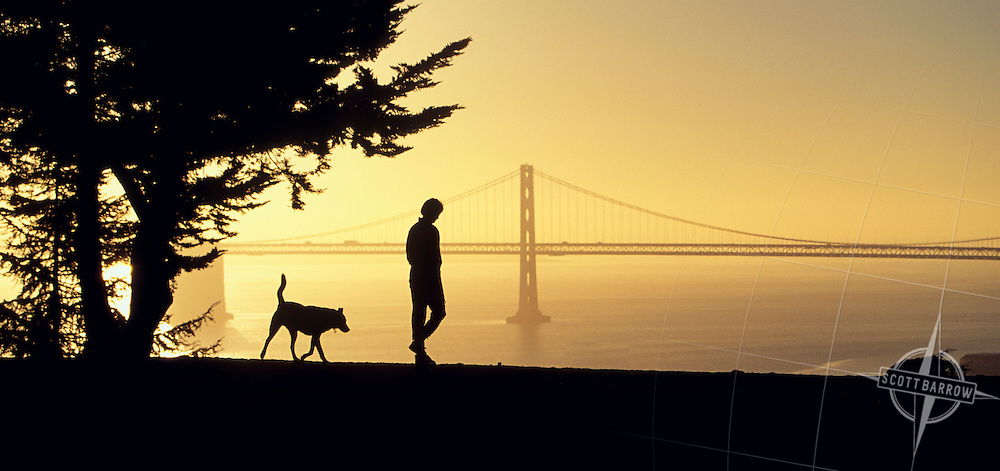 Woman walking with a dog with the Oakland Bay Bridge in the background. from Telegraph Hill, San Francisco.