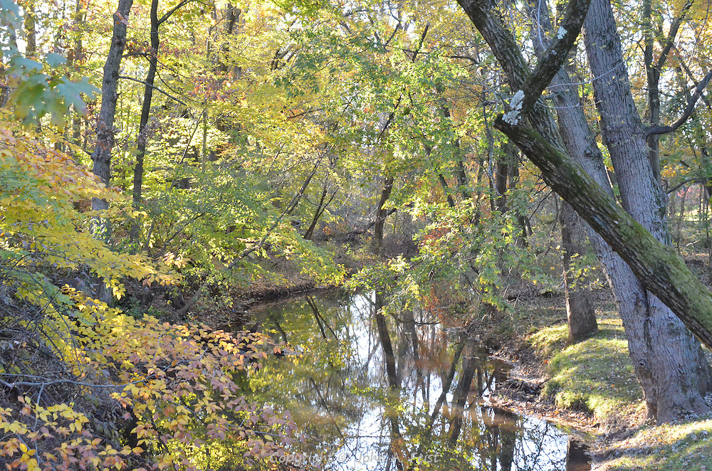 The scene along Royce's Brook in Hillsborough, NJ.  The leaves are still showing their colors in the late day sun as everything reflect off the water.