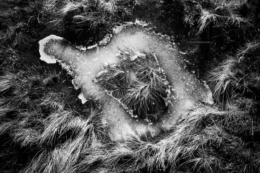 Not far from the summit of a frozen Moel Eilio in Snowdonia, say a frozen pool in grass, which had a striking resemblance to a delicate Anglesey. All sorts of metaphors in this.