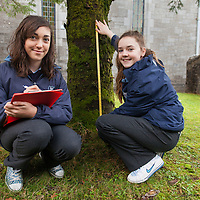 Aishling O'Connell and Clare Reilly from Mary Immaculate Secondary School, Lisdoonvarna, showing their study of the pattern of moss growth on coniferous trees