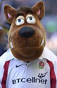 Twickenham. Surrey, UK., 16th February 2002, Six Nations International Rugby,  RFU Stadium, England vs Ireland,  [Mandatory Credit: Peter Spurrier/Intersport Images],<br /> <br /> The Lloyds TSB Six Nations Championship<br /> England v Ireland<br /> RFU - Twickenham<br /> 16/02/2002<br /> Mascots (England)<br /> <br /> <br /> <br />  <br /> <br /> <br /> <br /> <br /> <br /> <br /> <br /> <br /> <br /> <br /> Salesi Finau