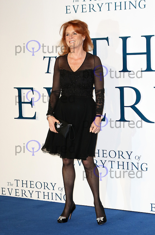 Sarah Ferguson, The Theory of Everything - UK film premiere, Leicester Square, London UK, 09 December 2014, Photo by Richard Goldschmidt
