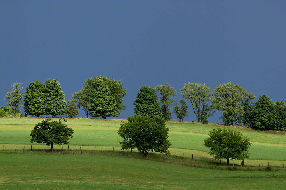 Chester, New York - Sunlight shines on Brookview Farm after a summer thunderstorm moved through the area on July 28, 2014.