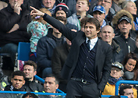 Football - 2016 / 2017 Premier League - Chelsea vs. Arsenal <br /> <br /> Chelsea Manager Antonio Conte points to the direction he wants his team to play at Stamford Bridge.<br /> <br /> COLORSPORT/DANIEL BEARHAM
