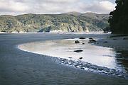 Nameless creek on Doughboy Bay, The Southern Circuit, Stewart Island / Rakiura, New Zealand Ⓒ Davis Ulands | davisulands.com