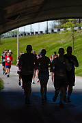 Out from the shadows, the runners  enter the home stretch.