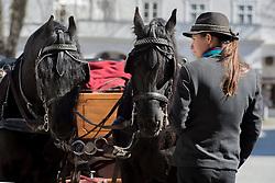 20.03.2014, Salzburg, AUT, Stadtansicht Salzburg, im Bild Eine Kutscherin wartet mit ihrem Pferdegespann vor dem Fiaker auf Touristen // Cityscape of Salzburg, Austria on 2014/03/20. EXPA Pictures © 2014, PhotoCredit: EXPA/ Freshfocus/ Andy Mueller<br /> <br /> *****ATTENTION - for AUT, SLO, CRO, SRB, BIH, MAZ only*****