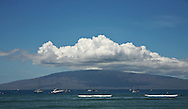 The Hawaiian Island of Lanai..The island was recently purchased by Oracle CEO Larry Ellison from fellow billionaire David Murdock. Lanai, also known as the pineapple island, has the world's largest pineapple plantation.