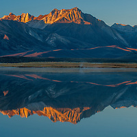 Mount Baldwin, The White Fang and Mount Morrison of the Eastern Sierra Nevada crest reflect in Big Alkali Lake in Long Valley near Mammoth Lakes, California.