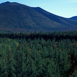 White Mountain N.F., NH. Pemigewasset Wilderness Area from near the site of the old Camp 22 logging camp.  Mt. Hancock is in the distance.  Early fall.