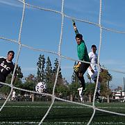 During the Orange Coast College Mens Soccer vs. Santa Ana College soccer game on Friday, November 4, 2016 player Joseph Vasquez scores.  ©Annette Wilkerson/Sports Shooter Academy