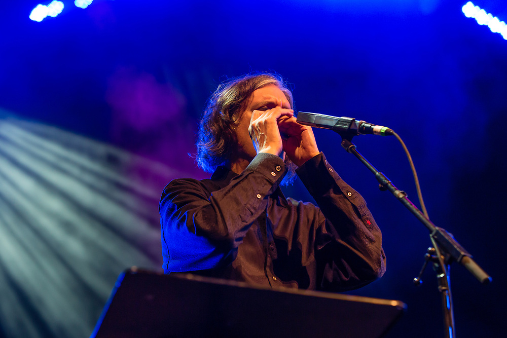 3 August 2017 – Brooklyn, NY. Singer Nellie McKay opened for Béla Fleck and the Flecktones to a large crowd at the BRIC Celebrate Brooklyn! Festival at the Prospect Park Bandshell.  The Flecktones Howard Levy on harmonica.