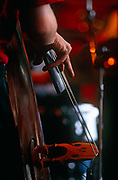 A detailed view of a musician's hand delicately plucking the strings of his double bass. Our attention is on the architecture and parts of the bass: Its f-hole, the fingerboard, strings and bridge. The double bass, also called the string bass, upright bass, bass violin or contrabass, is the largest and lowest-pitched bowed string instrument in the modern symphony orchestra. The double bass is a standard member of the string section of the symphony orchestra and smaller string ensembles in Western classical music. In addition, it is used in other genres such as jazz, 1950s-style blues and rock and rockabilly, traditional country music, bluegrass, tango and many types of folk music. The double bass is typically constructed from several types of wood, including maple for the back, spruce for the top, and ebony for the fingerboard.