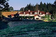 Sunrise light on Byington Vineyard & Winery, Santa Cruz Mountains, California