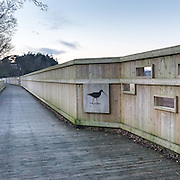 Bowling Green Marsh Nature Reserve, Devon.