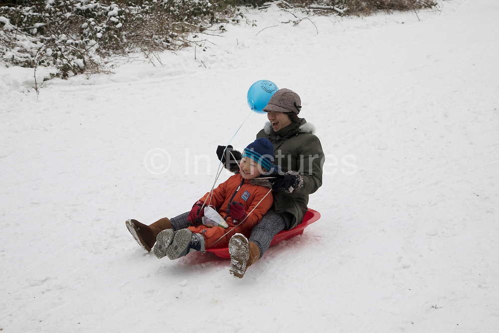 Snow sledging fun in Highbury Park as freezing weather, dubbed The Beast from the East due to the sub zero cold temperature winds coming in from Siberia, descends on Kings Heath on 3rd March 2018 in Birmingham, United Kingdom.