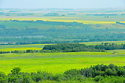 Farmland<br /> <br /> Saskatchewan<br /> Canada