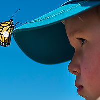 Four-year-old Linden Kline watches closely after one of the 14 tagged Monarch Butterfly lands on her hat shortly after it was  released by the Deschutes Land Trust in Hollinshead Park on Saturday.