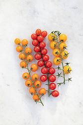 Rainbow cherry tomato vines. Tomato 'Gardeners' Delight', 'Sungold' and Yellow cherry variety to be chosen by Gary