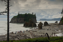 Crowds Loving Nature Too Much at Ruby Beach, Olympic National Park, Washington, US