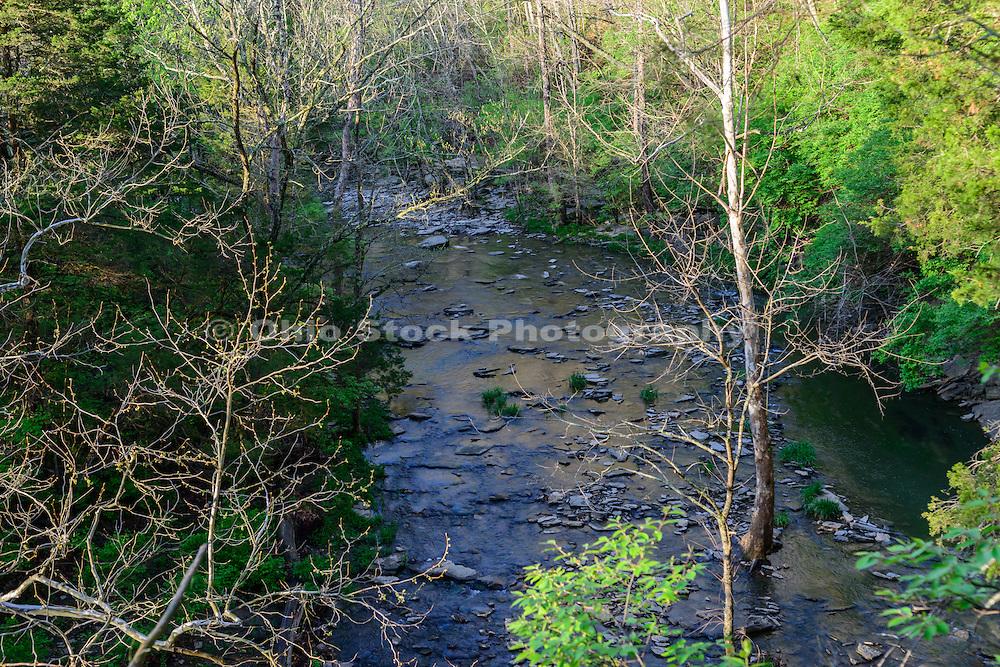 Photo of Caesar Creek State Park, Waynesville, Ohio.