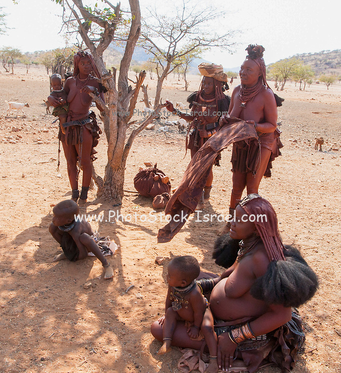 Himba women sell handicraft and knickknacks to tourists to their village, Kaokoveld, Namibia, Africa