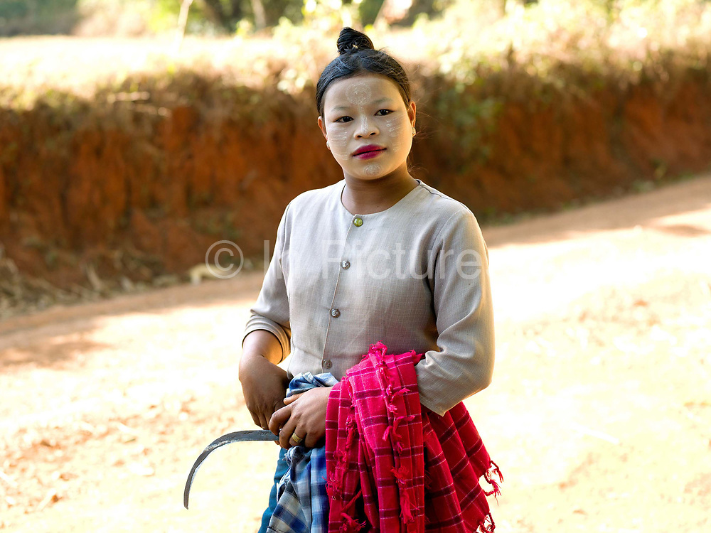 A Pa'O ethnic minority woman wearing thanakha (a traditional Burmese sunscreen and moisturiser) on her way to work on the farm, Shan State, Myanmar (Burma)