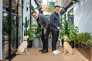 """EMBARGOED IMAGE - AVAILABLE FOR PUBLICATION FROM 00.01 on Thursday 17th October; 2019.<br /> ##Editorial free to use photo##<br /> <br /> Smiles All Around – guide dog puppies Ant and Dec are perfectly poised as their celebrity namesakes prepare for photo:<br /> <br /> To mark this year's Guide Dogs Appeal, Pups to Partnerships, Ant and Dec have had two guide dog pups named after them, an adorable Yellow Labrador puppy has been named after Ant while the playful Golden Retriever has been named after Dec. Ant and Dec are supporting this year's Guide Dogs Appeal which follows the progress of a group of seven puppies. Throughout October, the charity is sharing the journey of the puppies as they progress to become life-changing guide dogs.   <br />  <br /> Speaking of the partnership, Ant says: """"We're so proud to be part of the Pups to Partnerships campaign; not only do we get to meet these adorable puppies but we also get to hear about the great work that Guide Dogs does."""" Dec adds: """"These puppies will go on to change lives and give two people living with sight loss the independence and freedom we take for granted; we can't wait to see how these puppies progress."""" <br />  <br /> The Guide Dogs Pups to Partnerships Appeal is taking place from the 1st to the 31st October 2019. For more information on how to get involved, visit: www.guidedogs.org.uk/appeal<br /> <br /> Picture date: Tuesday October 15; 2019.<br /> Photograph by Christopher Ison for Guide Dogs ©<br /> 07544044177<br /> chris@christopherison.com<br /> www.christopherison.com"""