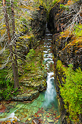 Narrows on Baring Creek, Glacier National Park, Montana USA
