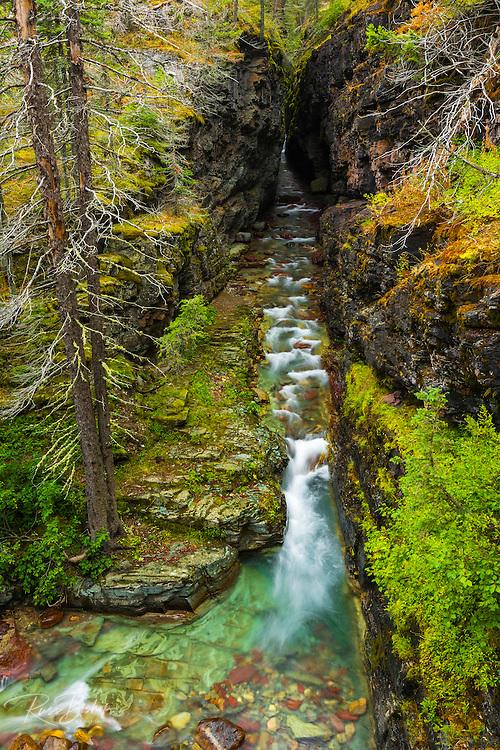 Narrows on Baring Creek, Glacier National Park, Montana USA