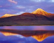 Sunset light illuminating Pilots Peak, also known as Vines Mountain, reflected in tundra pond, McFarland Range, Blackstone Plateau, Tombstone Territorial Park, Yukon Territory, Canada.