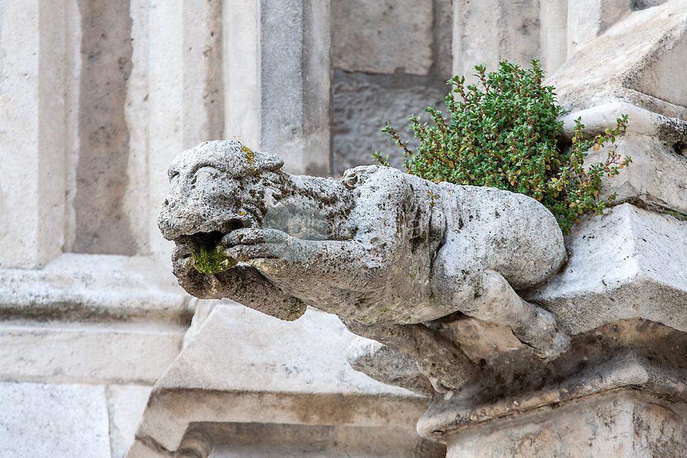 Detalle de una gárgola de la Catadral de Burgos. Castilla y León. España. Europa ©Javier Abad / PILAR REVILLA