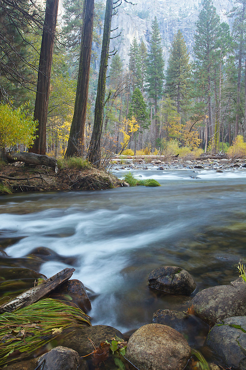 long exposure to capture the softness of this creek in yosemite valley