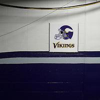 2008 Minnesota Vikings vs Dallas Cowboys at Texas Stadium in Irving, Texas on Friday, August 28, 2008.