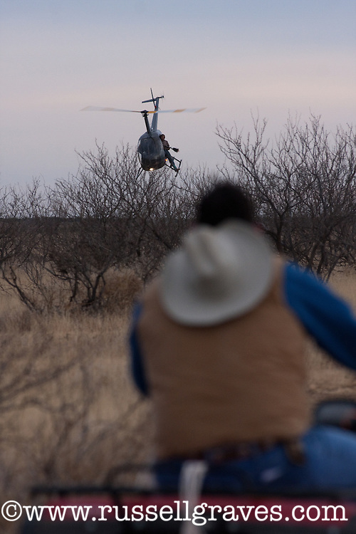 CHASE VEHICLE FOLLOWING A HELICOPTER DURING A MULE DEER RESEARCH STUDY