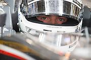 April 17, 2014 - Shanghai, China. UBS Chinese Formula One Grand Prix. Van Der Garde, Sauber F1<br /> <br /> © Jamey Price / James Moy Photography