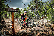 """SHOT 8/6/17 5:09:23 PM - A female mountain biker makes her way over a set of rocks while mountain biking with friends in the Iron Hills Trail System in Cedar City, Utah. """"Lichen It,"""" is a beginner trail that is open to hikers, runners and cyclists of all experience levels. The second trail, """"Lava Flow,"""" is for mountain bikes only and is meant to offer a wider range of difficulty to entice more experienced riders onto the land. (Photo by Marc Piscotty / © 2017)"""